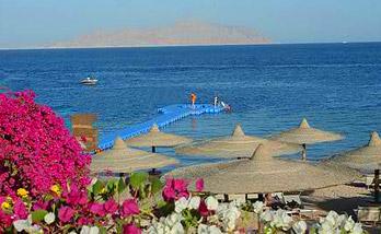 Отели шарм эль шейха coral sea sensatori resort 5